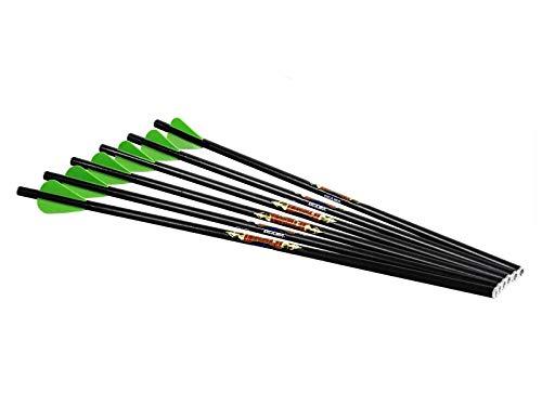 Excalibur Diablo Carbon Arrows (Pack of 6)