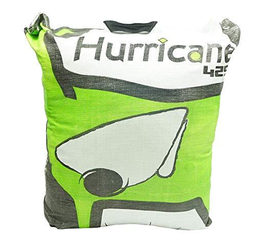 Field Logic Hurricane H28 Archery Bag Target green, 28 Inch