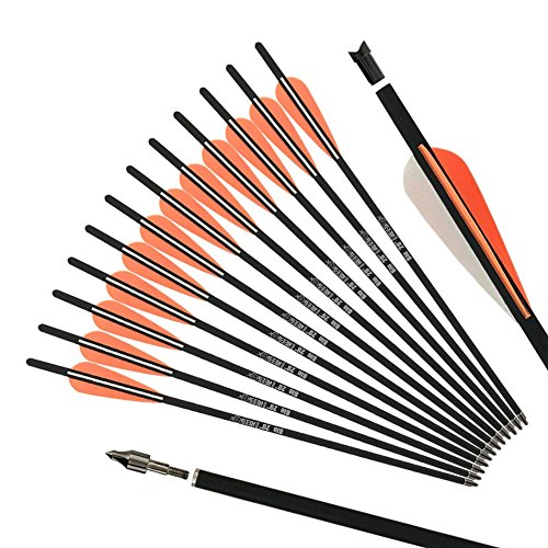 REEGOX Crossbow Bolts 20 inch Bio Crossbow Arrows with 4-Inch Vanes(Pack of 12)