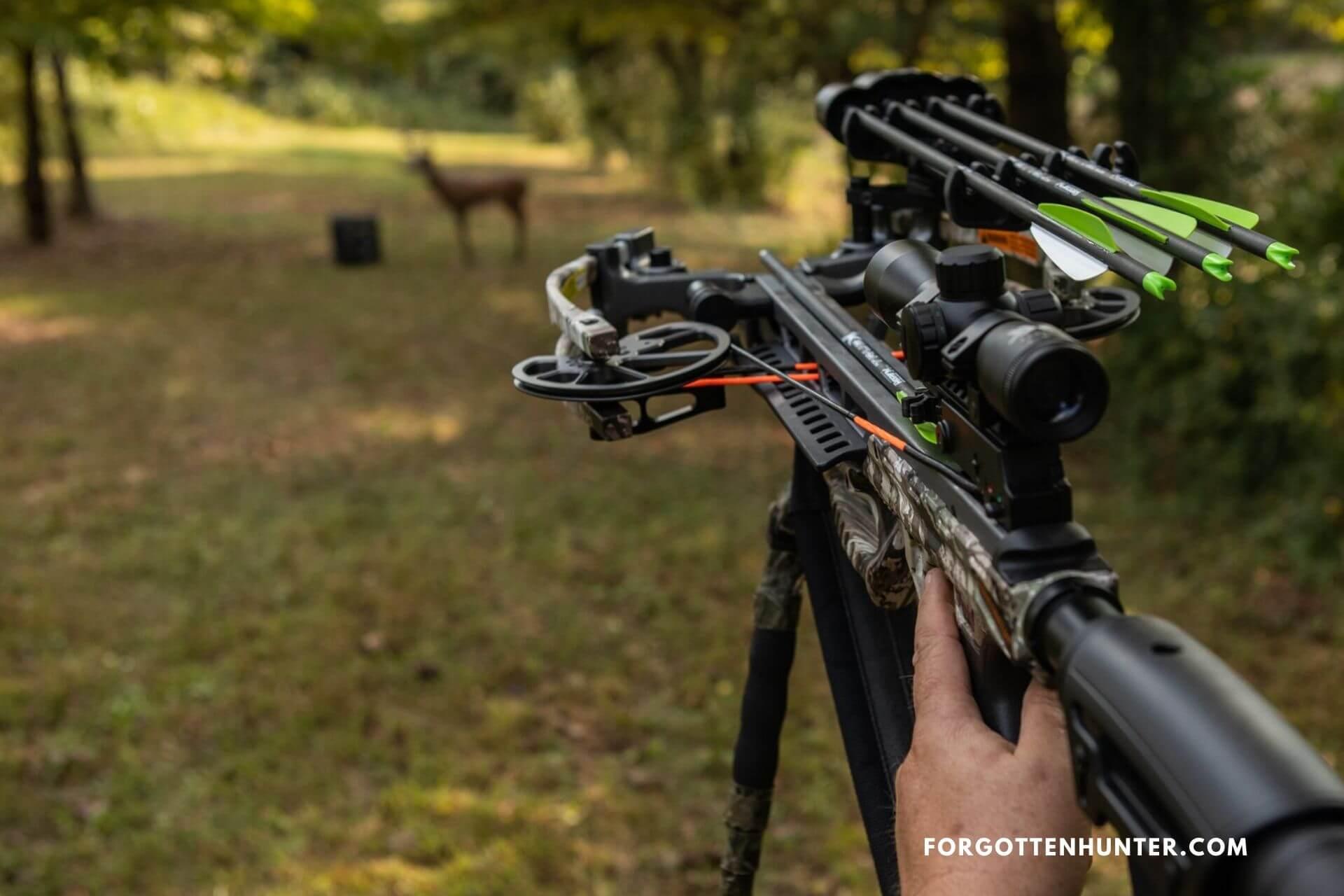 Bear X Constrictor Shooting Range
