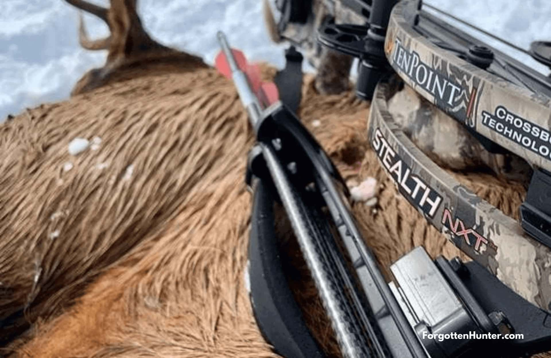TenPoint Stealth NXT ACUdraw Pro Elite Package Crossbow Review