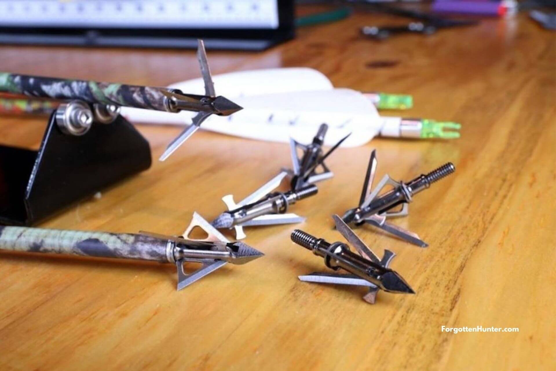 16 Best Broadheads To Buy In 2020 - Tested And Reviewed [Introductory & Buyer's Guide]