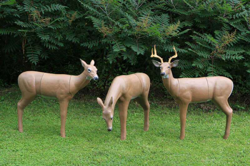 Real Wild 3D Big Buck Archery Target