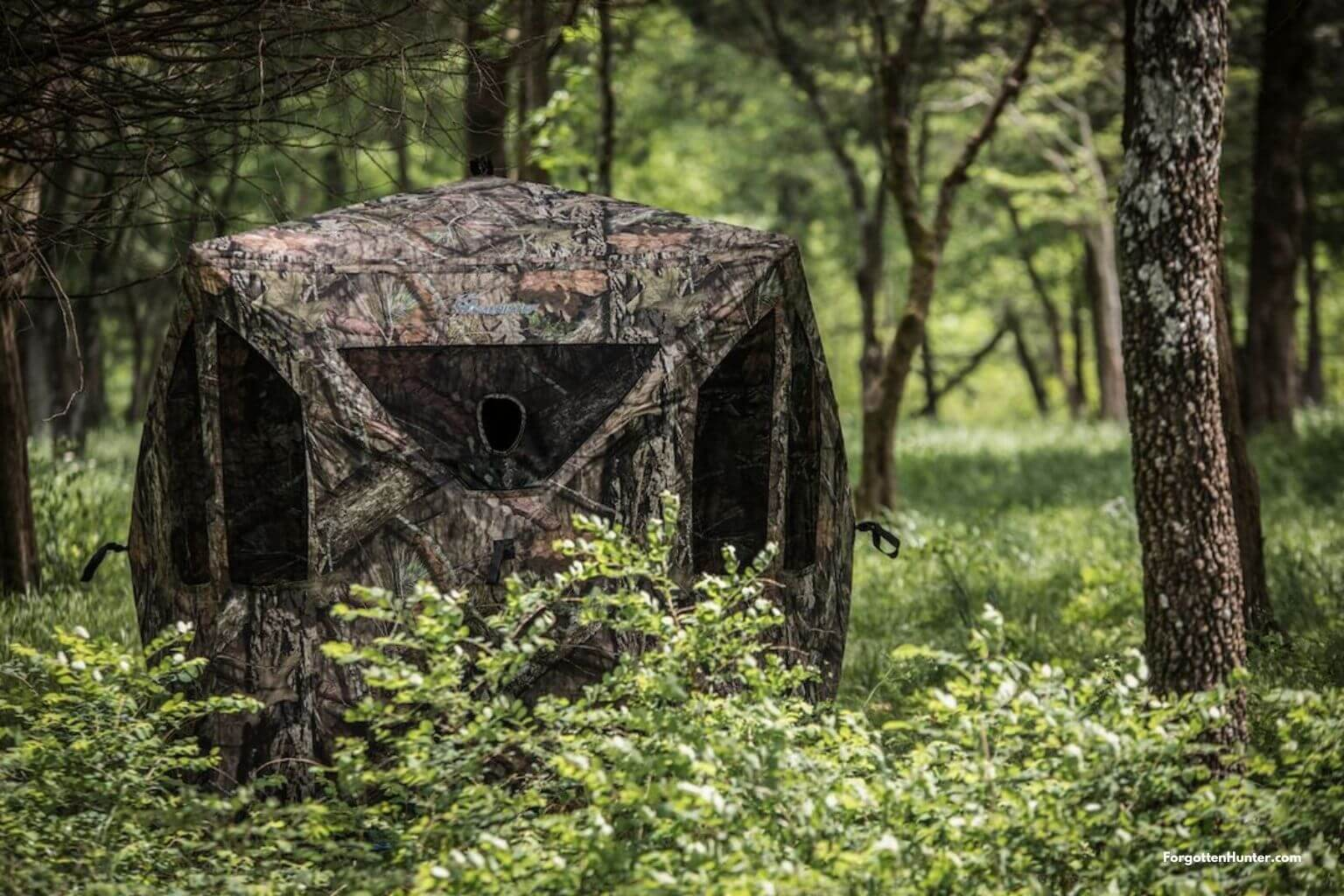 The best Hunting Blinds in 2021 – Reviews and Buyer's Guide