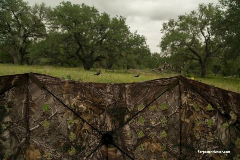 Throw Down Blind Turkey Hunting
