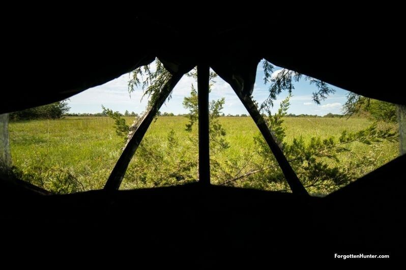 Windows of a Hunting Blind