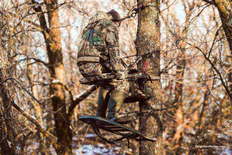 The Best Tree Stands for 2021 (Climbing/Hang On/Ladder) - Buyer's Guide 1